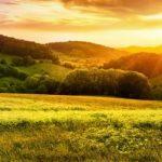 o-que-levar-em-consideracao-ao-escolher-uma-linha-de-credito-rural-para-sua-empresa