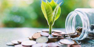 Empréstimo Pessoal Luziânia GO - Para Negativado e Com Restrição